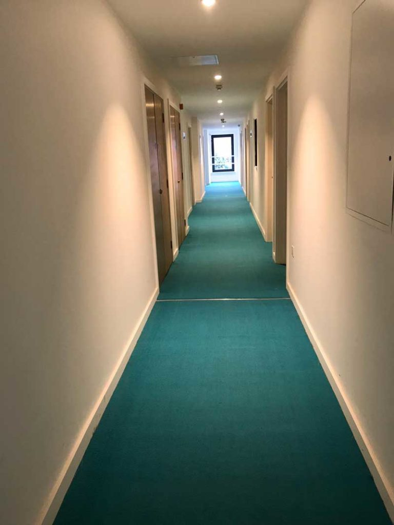 Hotel corridor carpet cleaning after photo